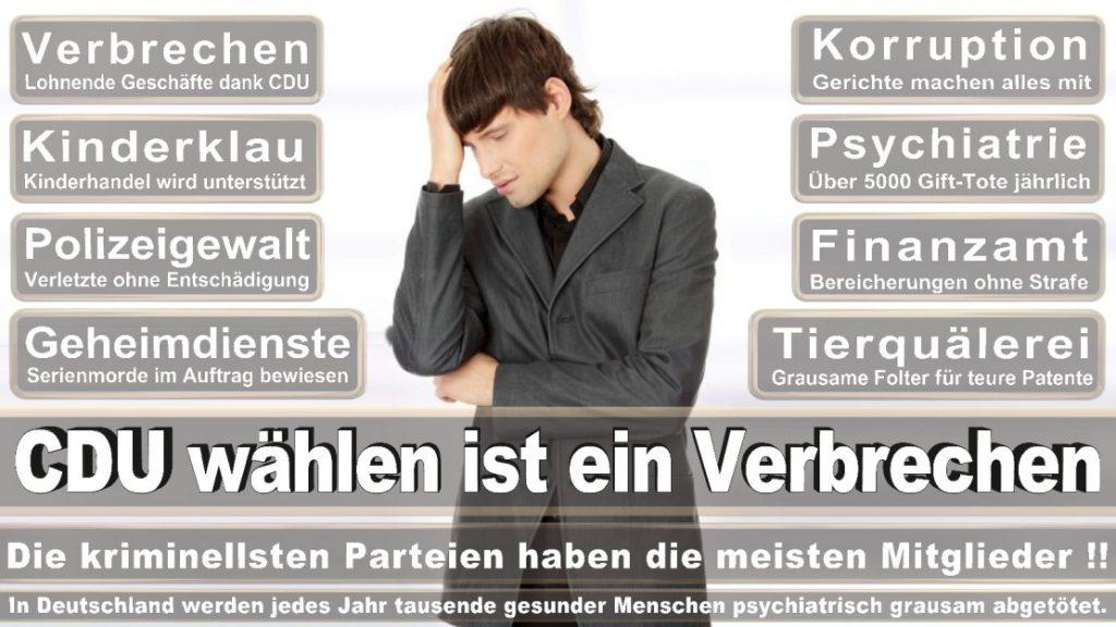 Wahlplakate-2017-CDU (152)