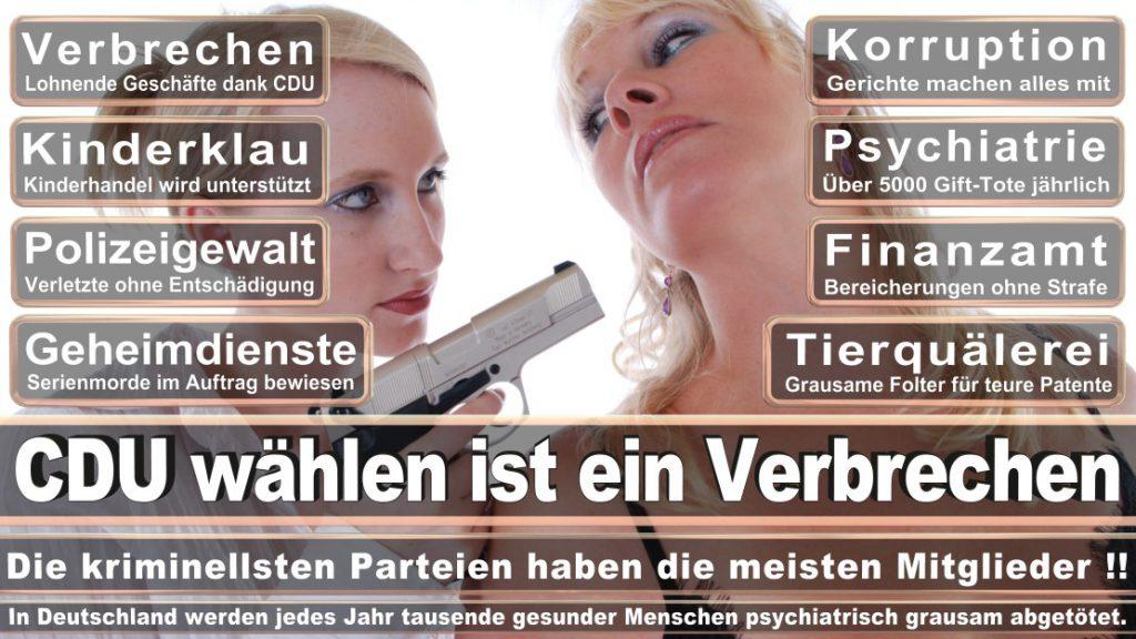 Wahlplakate-2017-CDU (153)