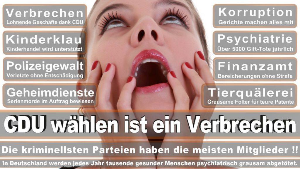 Wahlplakate-2017-CDU (155)