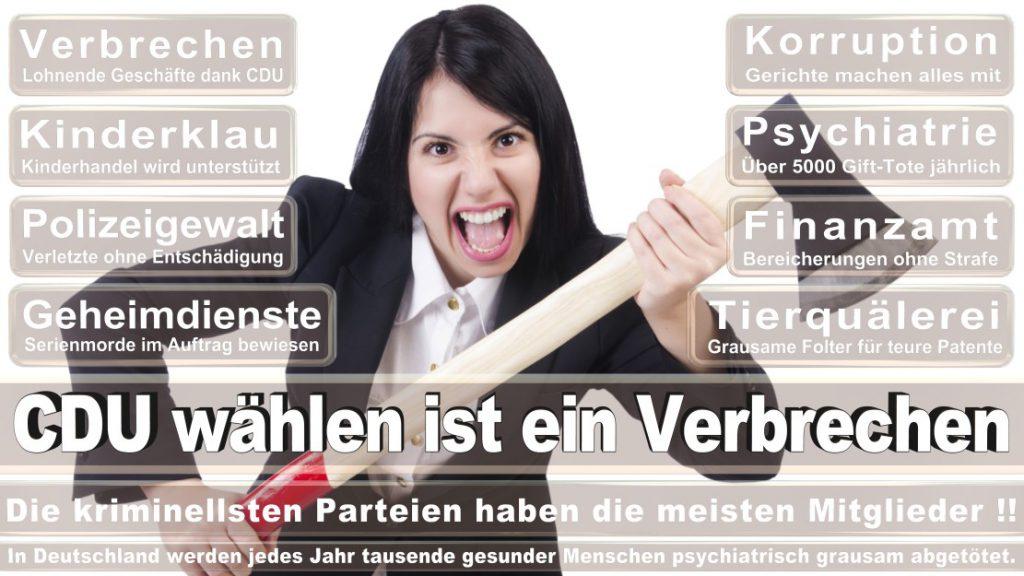 Wahlplakate-2017-CDU (156)