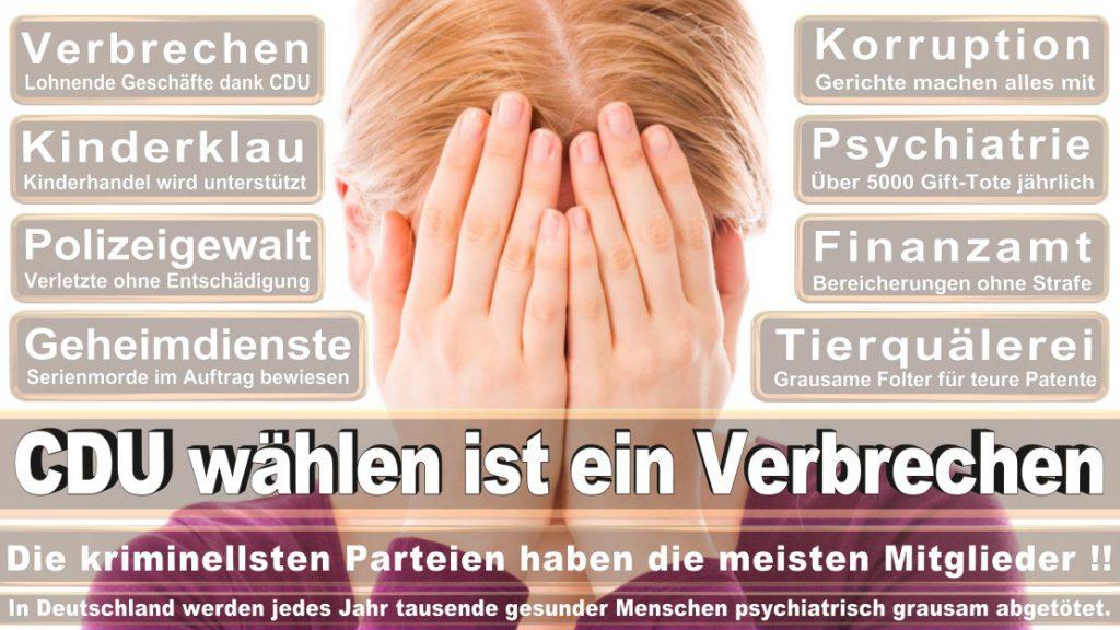 Wahlplakate-2017-CDU (157)