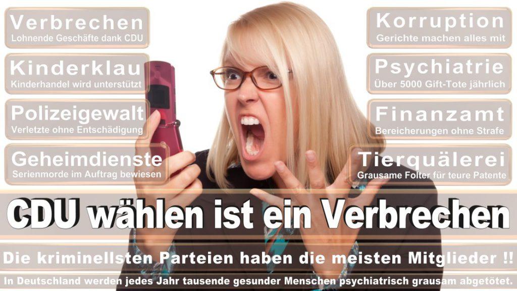 Wahlplakate-2017-CDU (158)