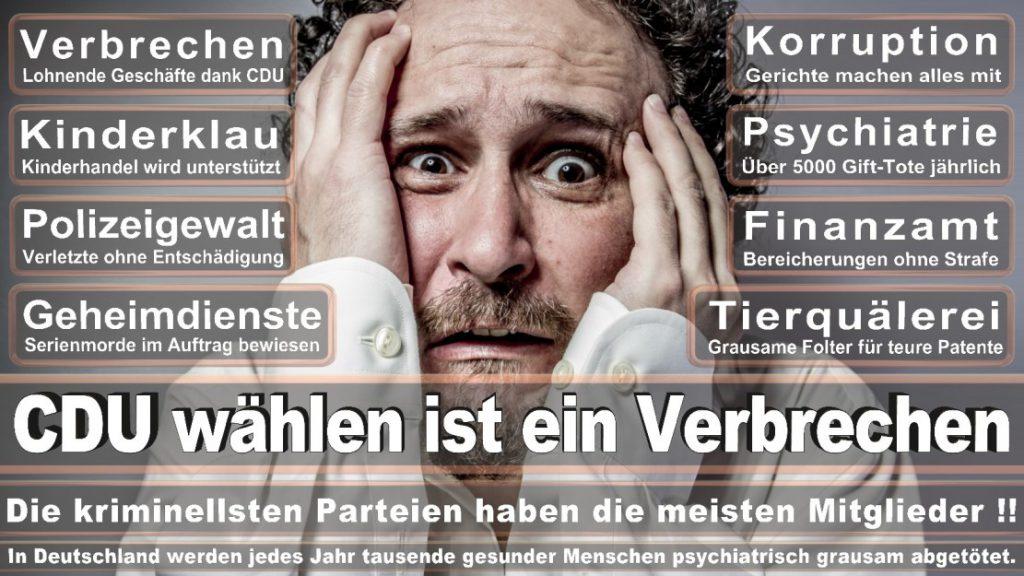 Wahlplakate-2017-CDU (159)