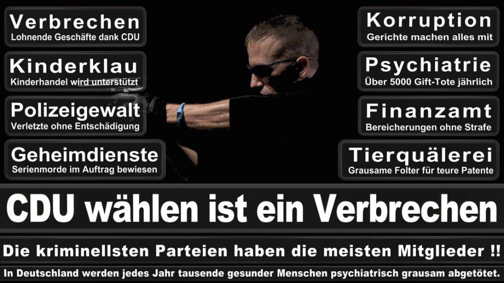 Wahlplakate-2017-CDU (16)