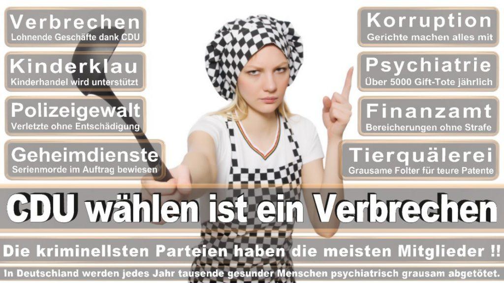 Wahlplakate-2017-CDU (160)