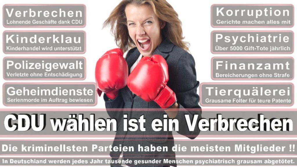 Wahlplakate-2017-CDU (161)