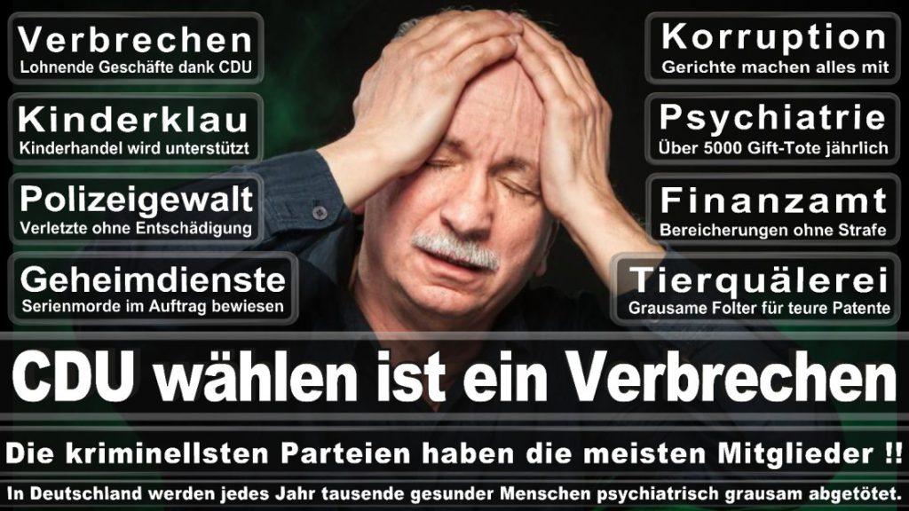 Wahlplakate-2017-CDU (162)