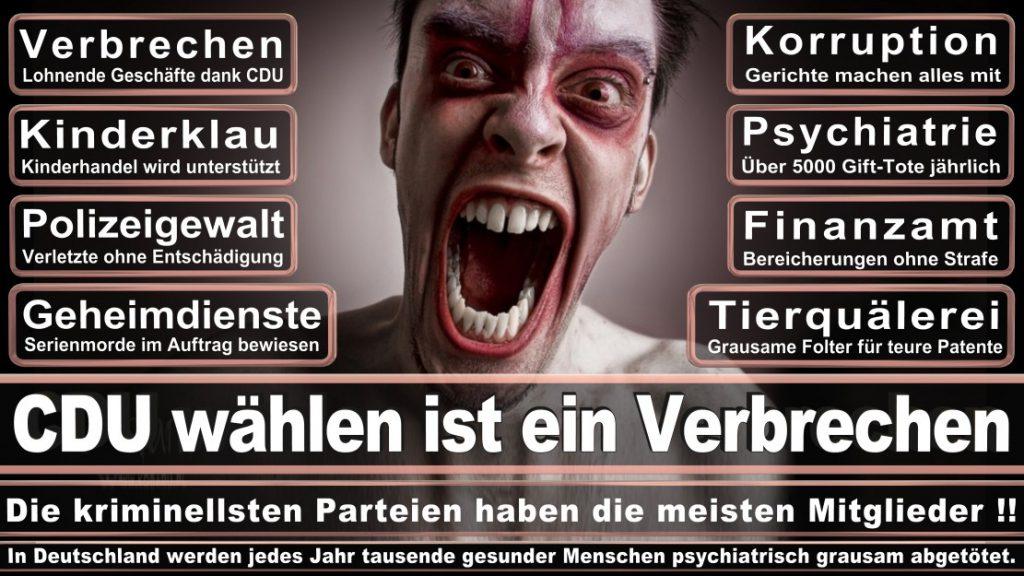 Wahlplakate-2017-CDU (163)
