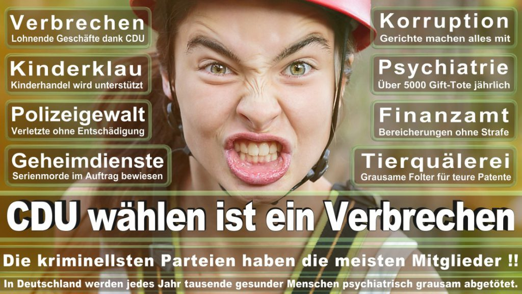 Wahlplakate-2017-CDU (164)