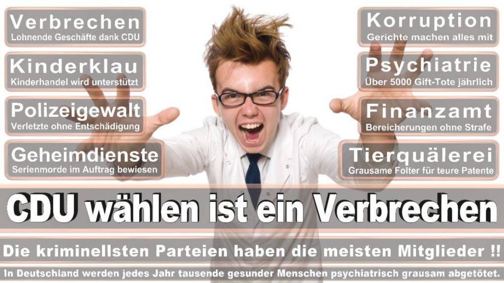 Wahlplakate-2017-CDU (165)