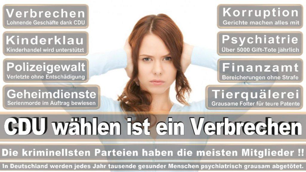 Wahlplakate-2017-CDU (166)