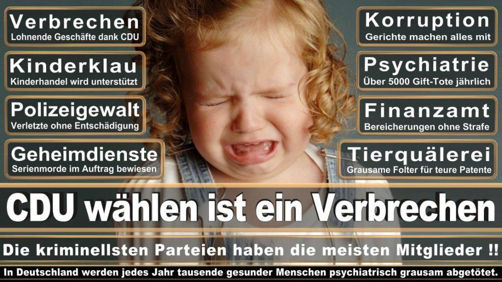 Wahlplakate-2017-CDU (167)