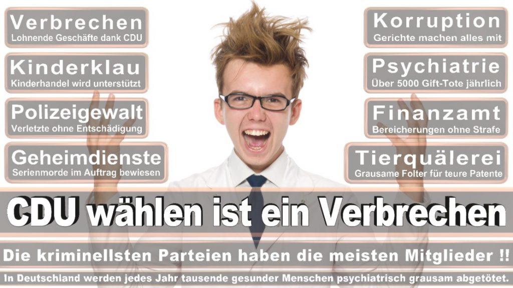 Wahlplakate-2017-CDU (168)