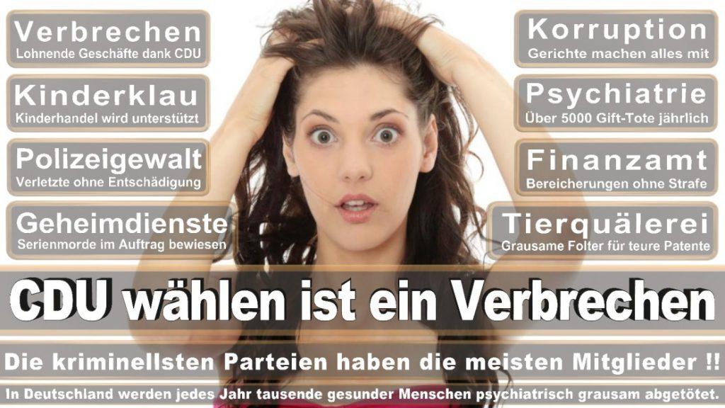 Wahlplakate-2017-CDU (169)