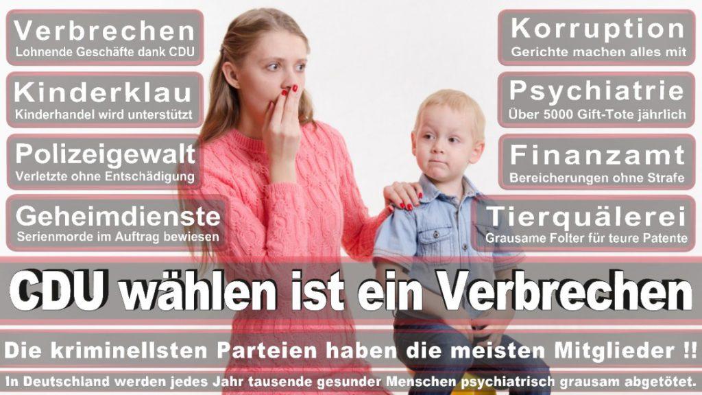 Wahlplakate-2017-CDU (17)