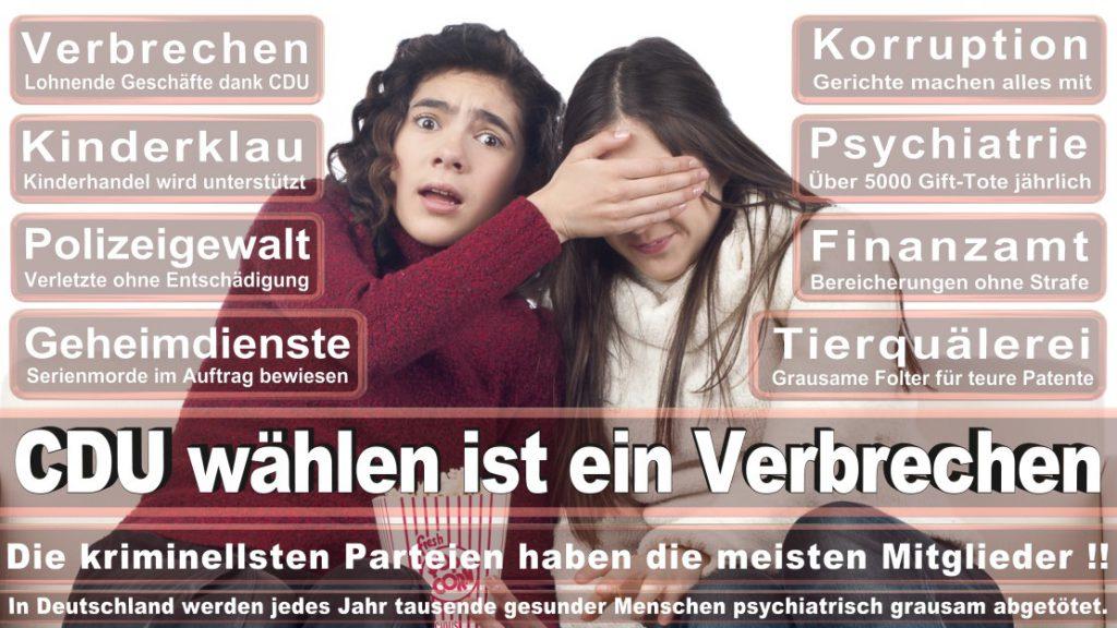 Wahlplakate-2017-CDU (170)