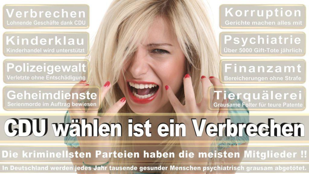 Wahlplakate-2017-CDU (172)