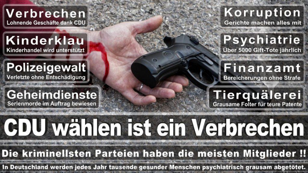 Wahlplakate-2017-CDU (173)