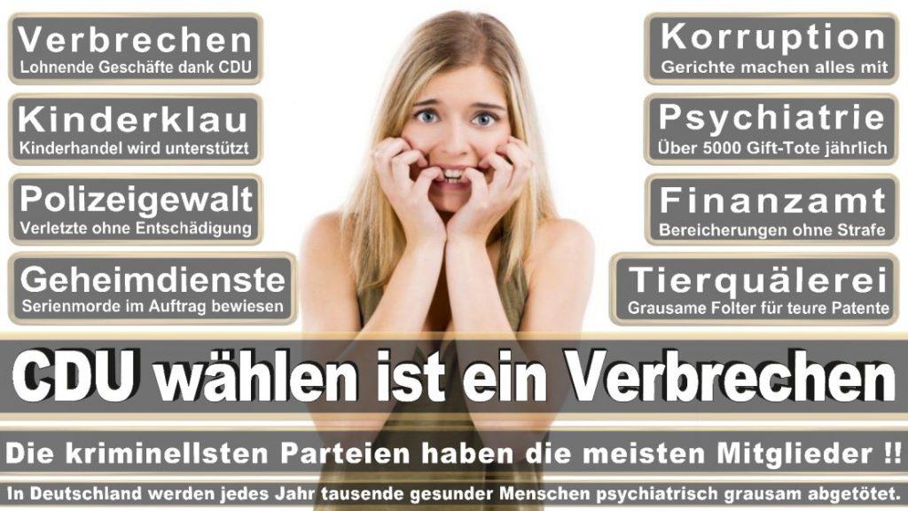 Wahlplakate-2017-CDU (174)