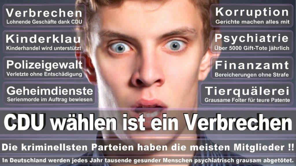 Wahlplakate-2017-CDU (175)