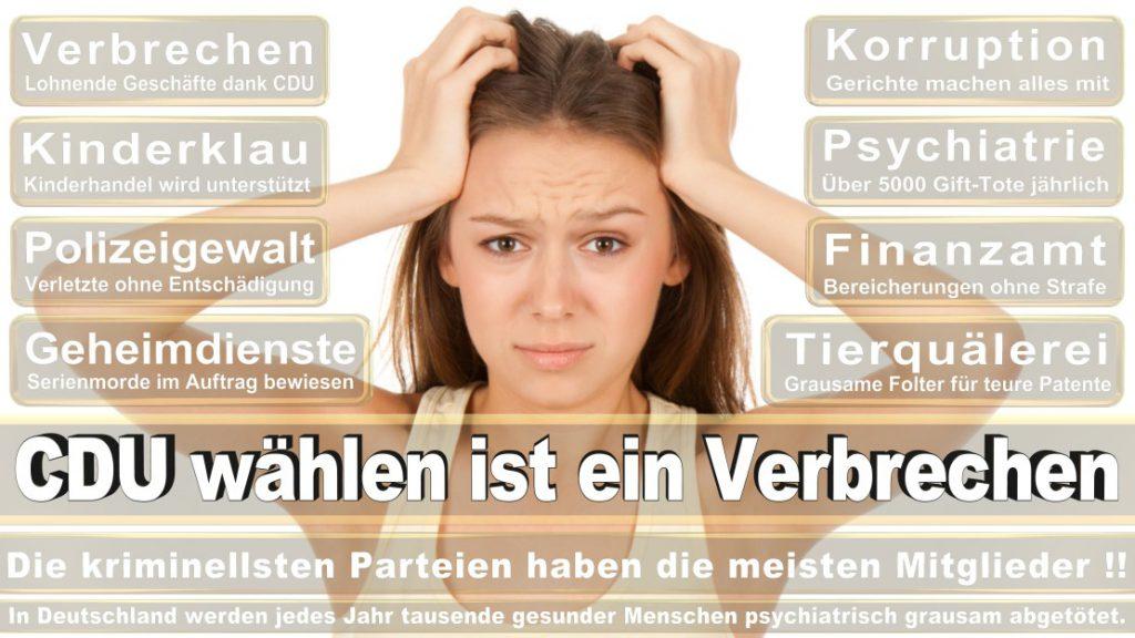 Wahlplakate-2017-CDU (178)