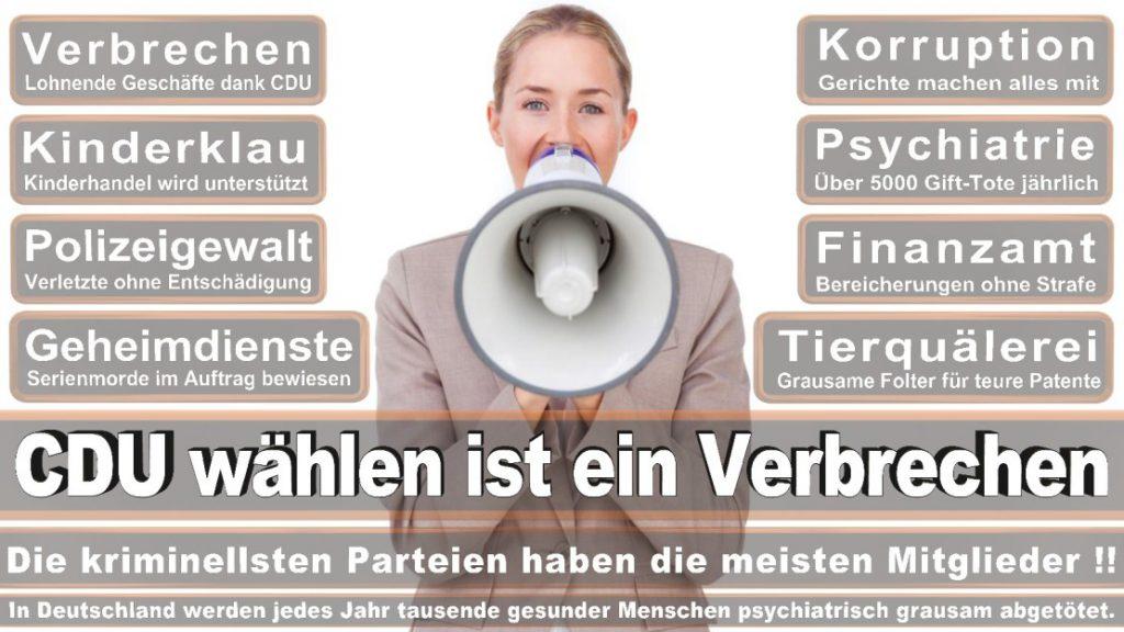 Wahlplakate-2017-CDU (179)