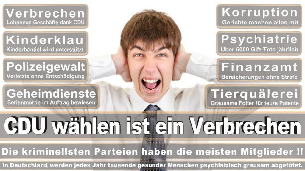 Wahlplakate-2017-CDU (18)
