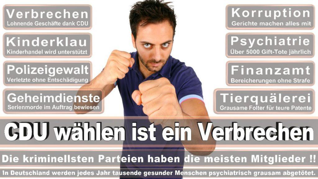 Wahlplakate-2017-CDU (180)