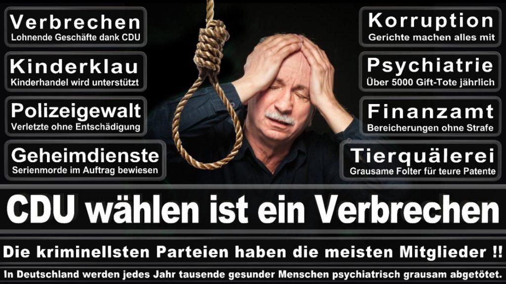 Wahlplakate-2017-CDU (181)