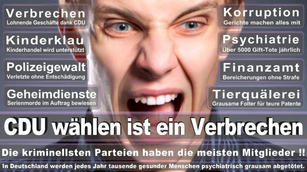 Wahlplakate-2017-CDU (182)