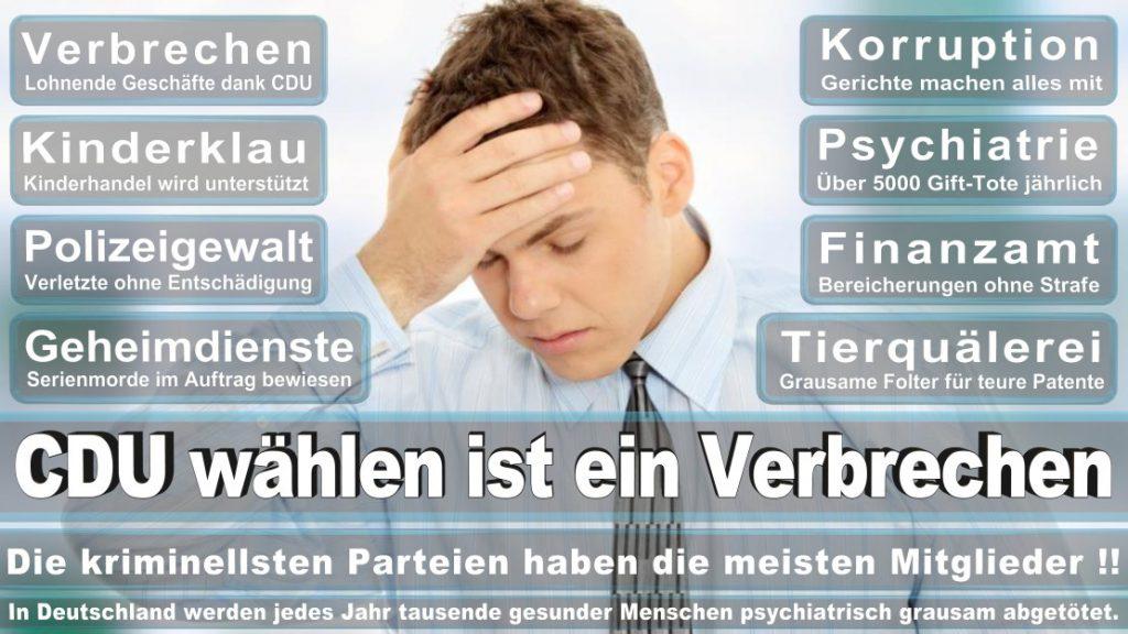 Wahlplakate-2017-CDU (184)