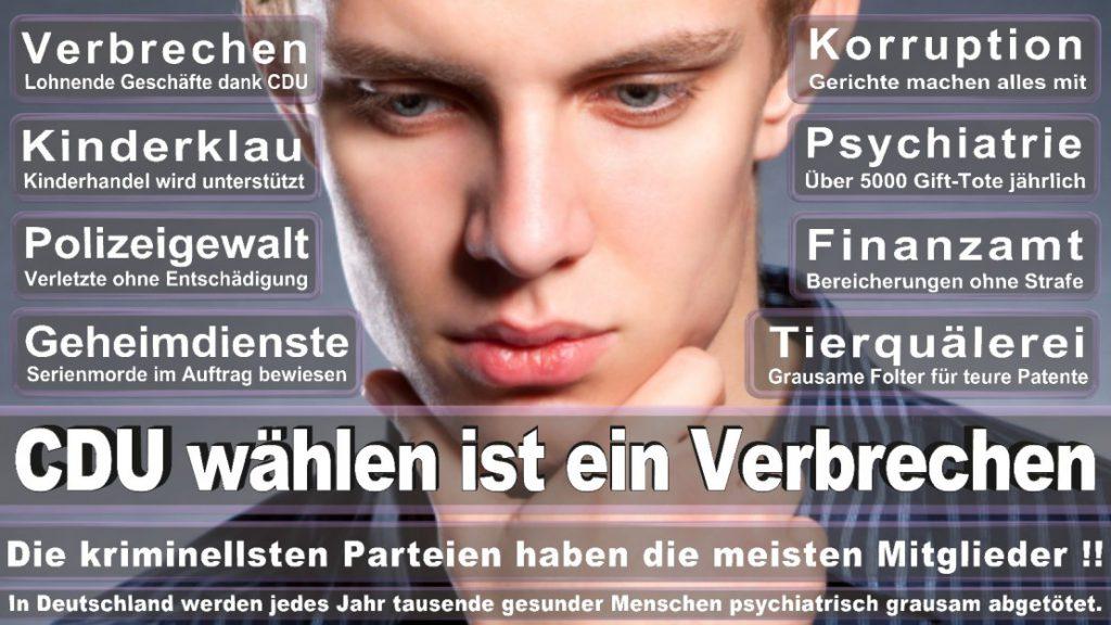 Wahlplakate-2017-CDU (185)