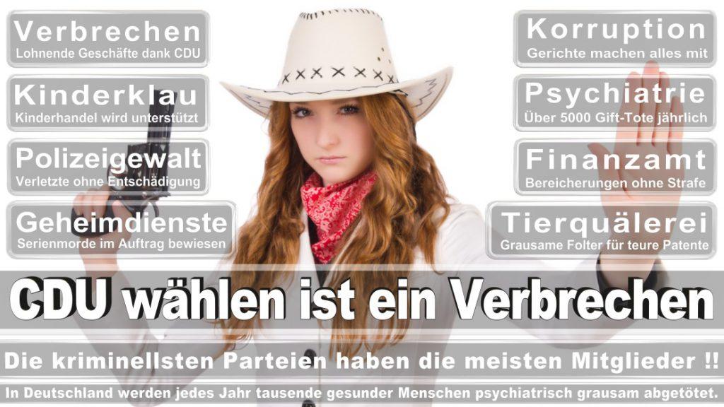 Wahlplakate-2017-CDU (186)