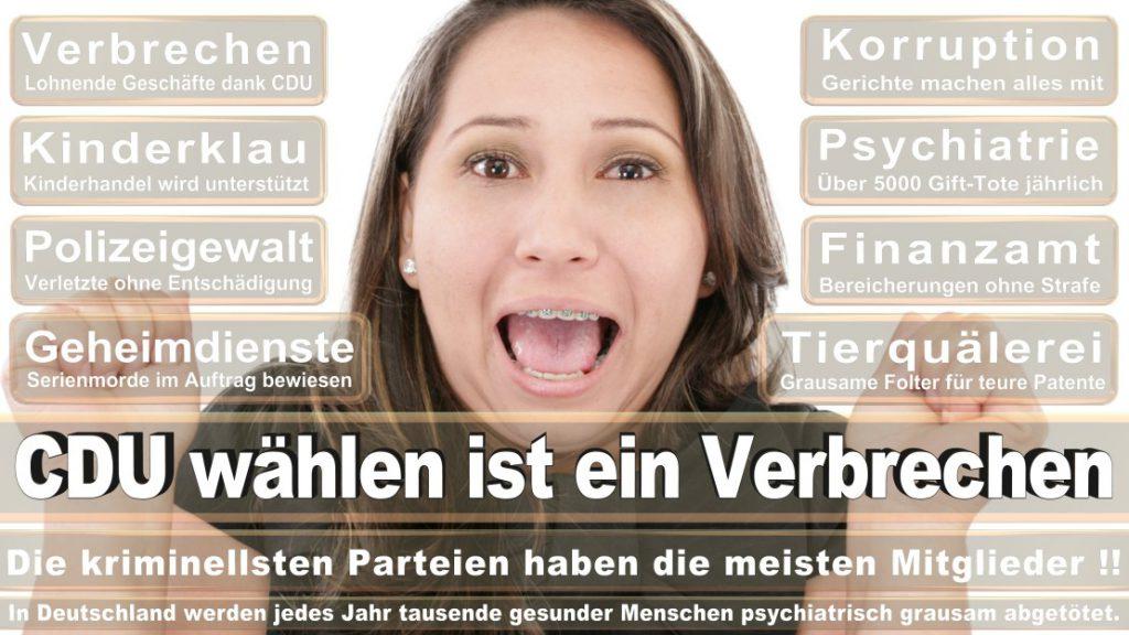 Wahlplakate-2017-CDU (187)