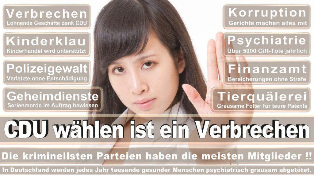 Wahlplakate-2017-CDU (188)
