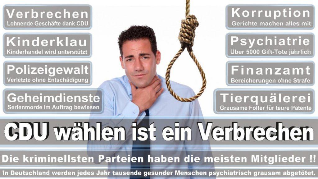 Wahlplakate-2017-CDU (189)
