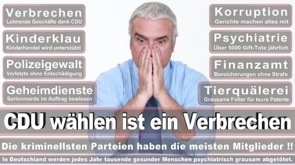 Wahlplakate-2017-CDU (19)