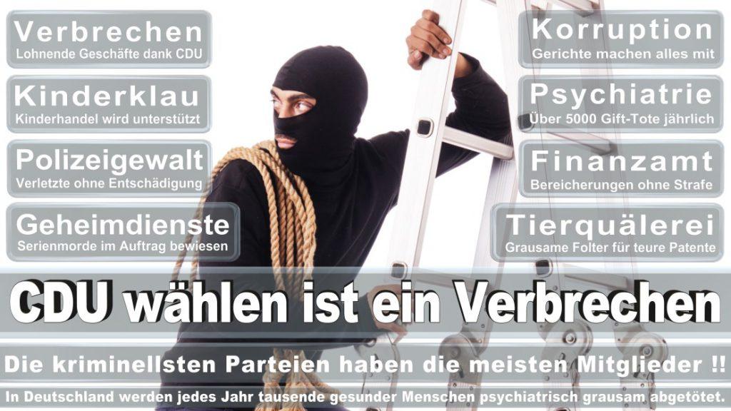 Wahlplakate-2017-CDU (190)