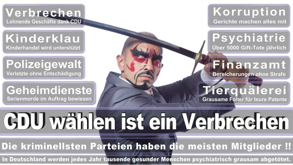 Wahlplakate-2017-CDU (192)