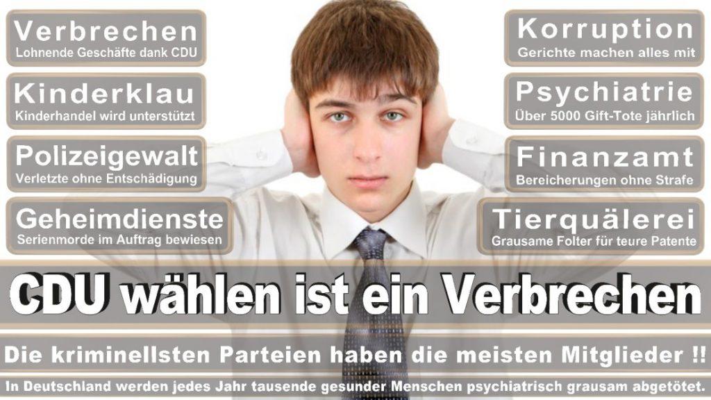 Wahlplakate-2017-CDU (193)