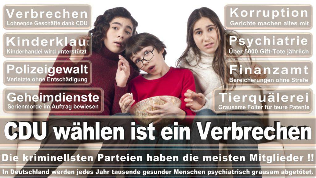 Wahlplakate-2017-CDU (194)