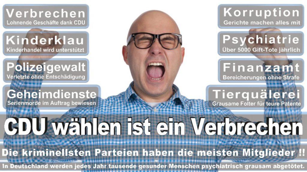 Wahlplakate-2017-CDU (195)
