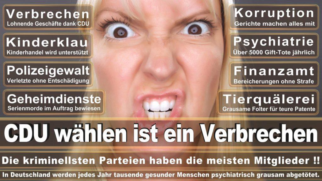 Wahlplakate-2017-CDU (196)