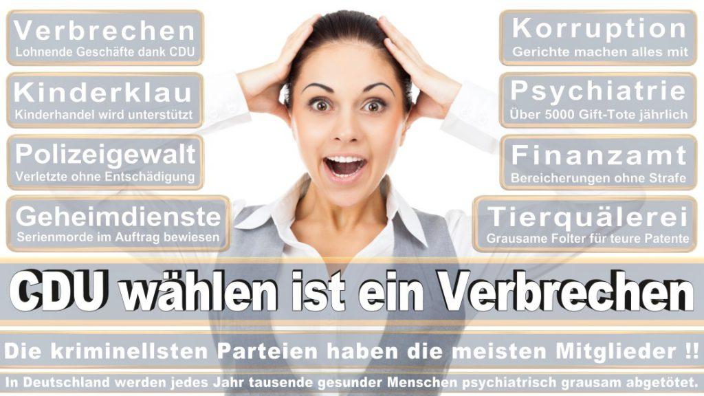 Wahlplakate-2017-CDU (197)