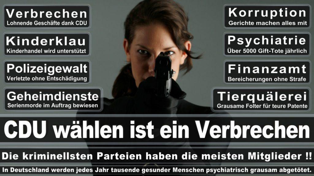 Wahlplakate-2017-CDU (198)