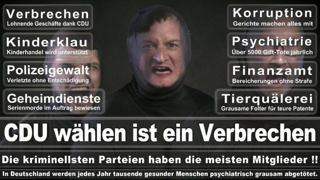 Wahlplakate-2017-CDU (199)