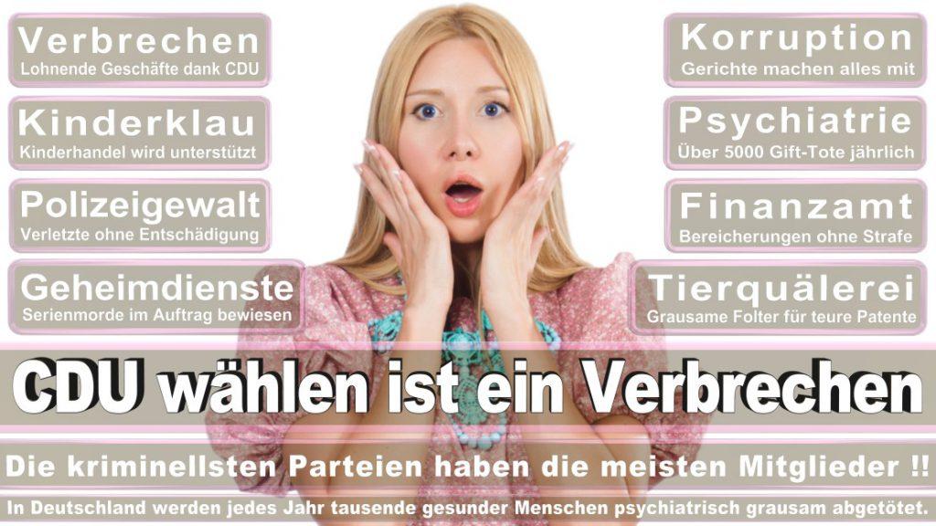 Wahlplakate-2017-CDU (2)
