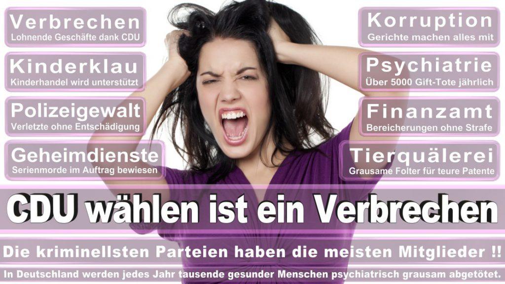 Wahlplakate-2017-CDU (20)