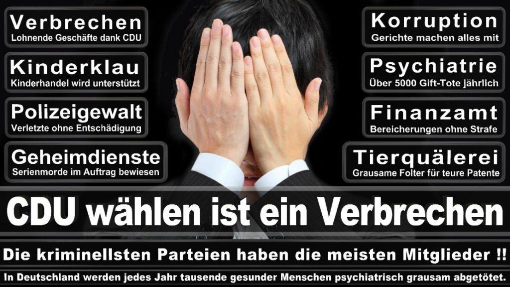 Wahlplakate-2017-CDU (200)