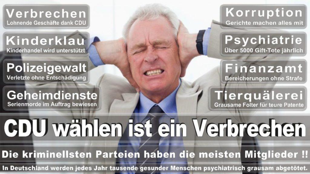 Wahlplakate-2017-CDU (201)